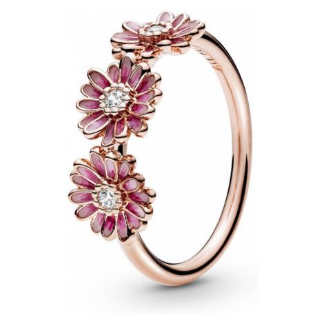 Pandora Bronzový prsteň Ružové sedmokrásky 188792C01 mm
