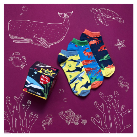 Banana Socks Unisex's Socks Set Under The Sea