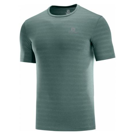 Pánske tričko Salomon XA Tee zelené