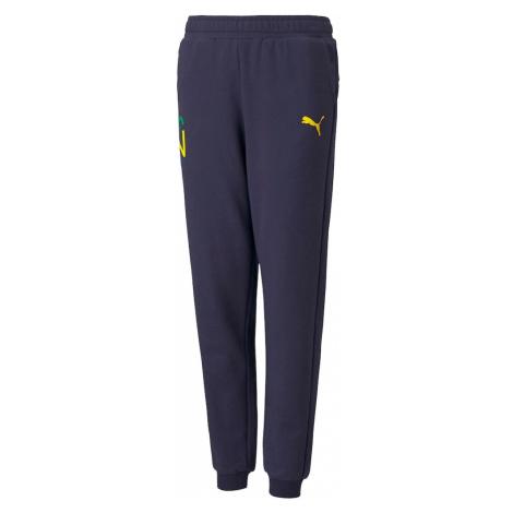 PUMA Športové nohavice 'Neymar'  žltá / tmavomodrá / svetlozelená