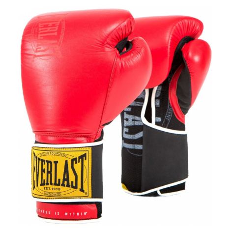 Boxerské rukavice Everlast Classic Training