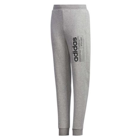 adidas YB BB PNT sivá - Chlapčenské tepláky