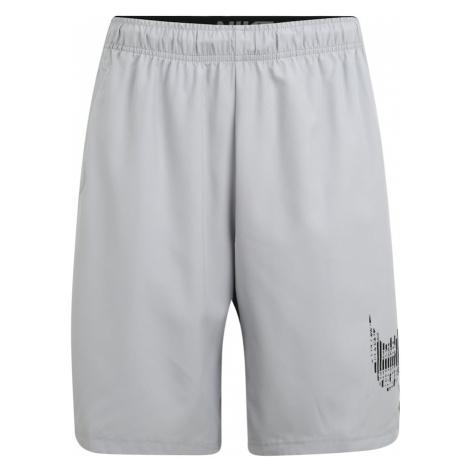 NIKE Športové nohavice 'Flex'  antracitová / svetlosivá