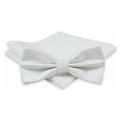 Krásny biely pánsky motýlik