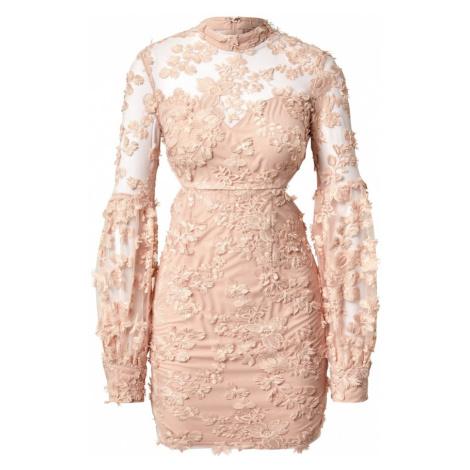 Love Triangle Šaty  ružová