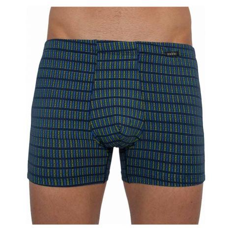 Pánske boxerky Andrie modré (PS 5261 C)