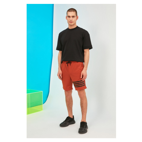 Trendyol Tile Men's Regular Fit Shorts & Bermuda