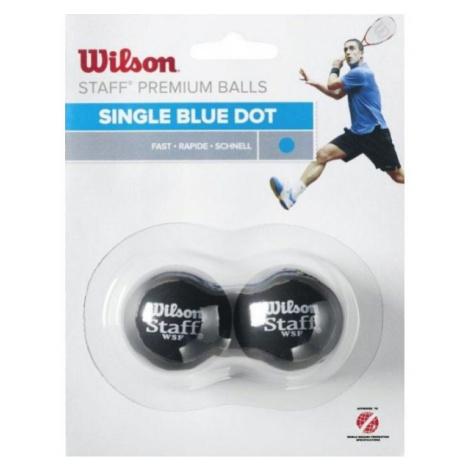Wilson STAFF SQUASH 2 BALL BLU DOT - Squashová loptička