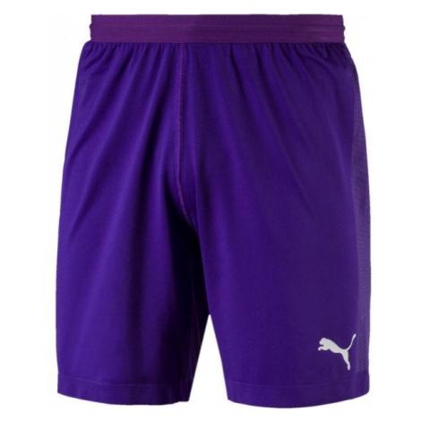 Puma FINAL evoKNIT GK Shorts fialová - Pánske brankárske trenky