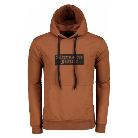Trendyol Brown Male Sweatshirt