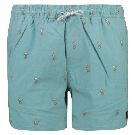Men's shorts Rip Curl VOLLEYSHORT VOLLEY ARCHIPELAGOES 16''