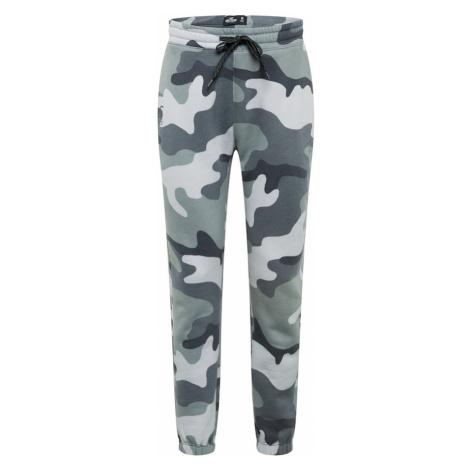 HOLLISTER Nohavice  sivá / pastelovo zelená / biela