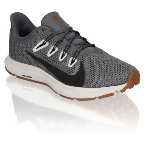 Nike Nike Quest 2 šedá
