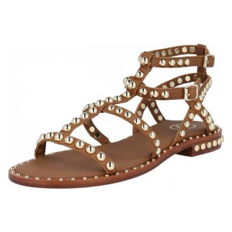 ASH Sandále  hnedá