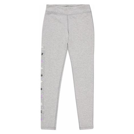 UNDER ARMOUR Športové nohavice  sivá
