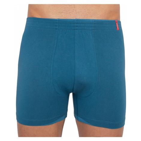 Pánske boxerky Andrie svetlo modré (PS 5260 C)