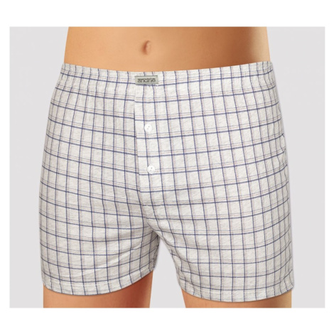 Men's shorts Andrie gray (PS 5448 A)