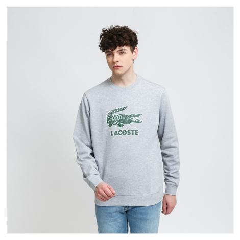 LACOSTE Men's Sweatshirt šedá