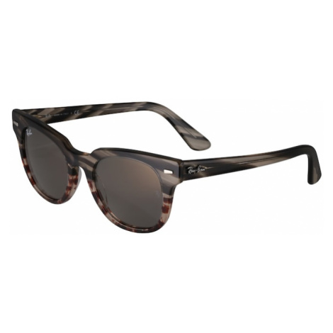 Ray-Ban Slnečné okuliare 'METEOR'  sivá