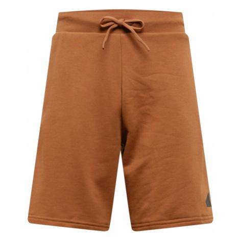 ADIDAS PERFORMANCE Športové nohavice  karamelová / čierna