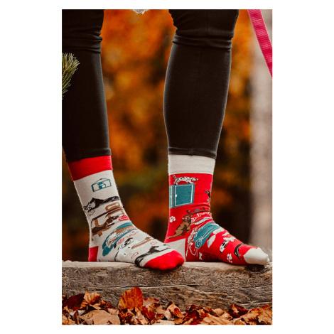 Sivo-červené ponožky Cat and Dog Life