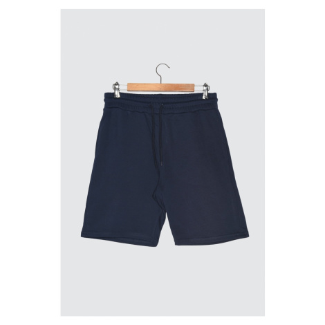 Trendyol Navy Men's Shorts & Bermuda