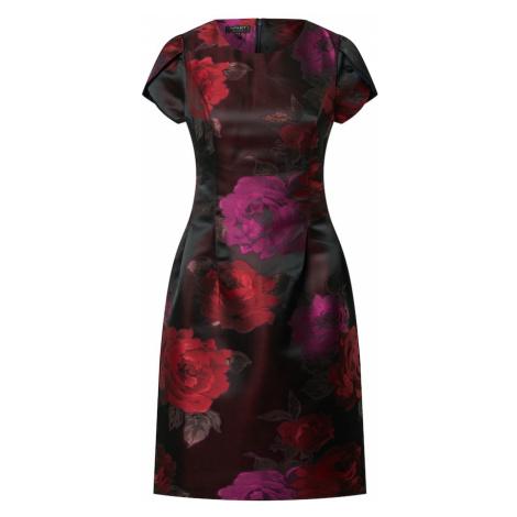 APART Šaty  zmiešané farby / bordová