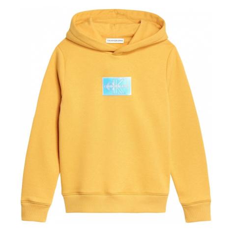 Calvin Klein Jeans Sveter  zlatá žltá / strieborná