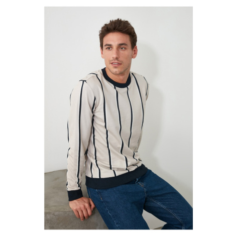 Trendyol Beige Men's Striped Bicycle Collar Sweatshirt