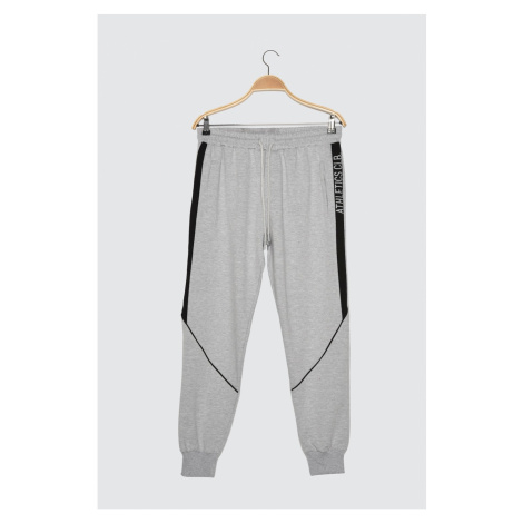 Trendyol Regular Fit Tracksuit bottom