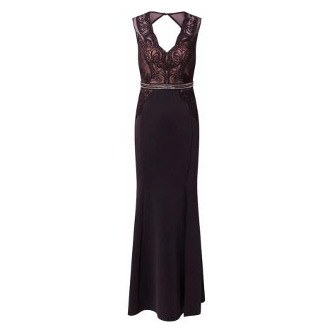Lipsy Večerné šaty  čierna / púdrová / strieborná