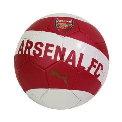 Puma Arsenal Fc S Originálnym Podpisom Petra Čecha