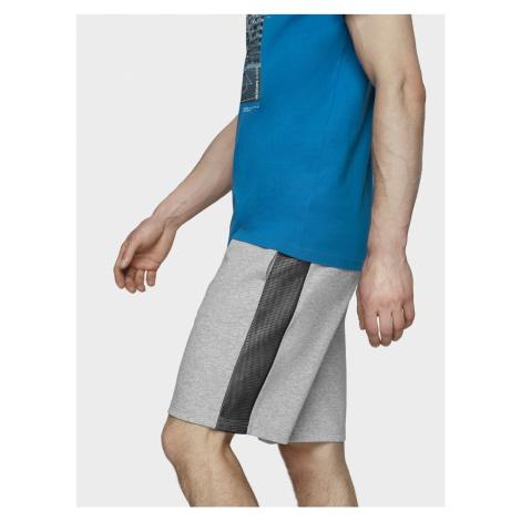 Pánske teplákové šortky 4F