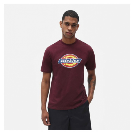 Dickies Icon Logo Tee DK0A4XC9MR