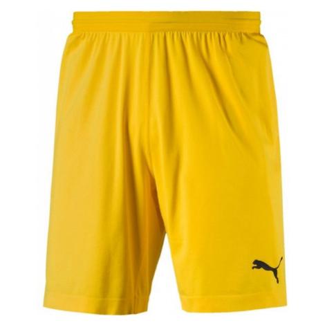 Puma FINAL evoKNIT GK Shorts žltá - Pánske brankárske trenky