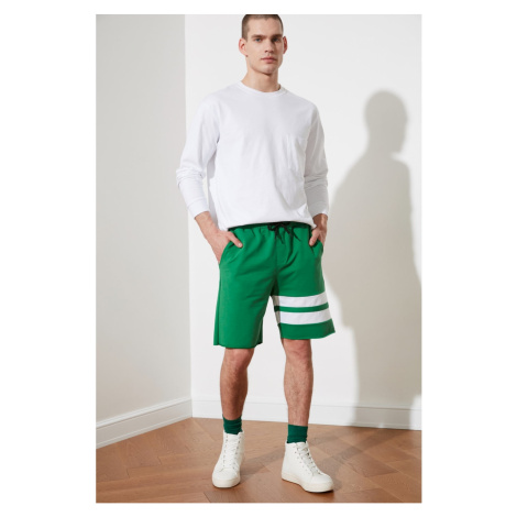 Trendyol Green Men's Regular Fit Panel Shorts & Bermuda