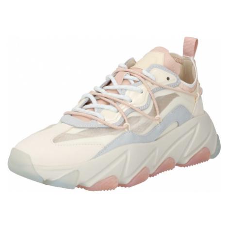 ASH Nízke tenisky  biela / opálová / svetloružová