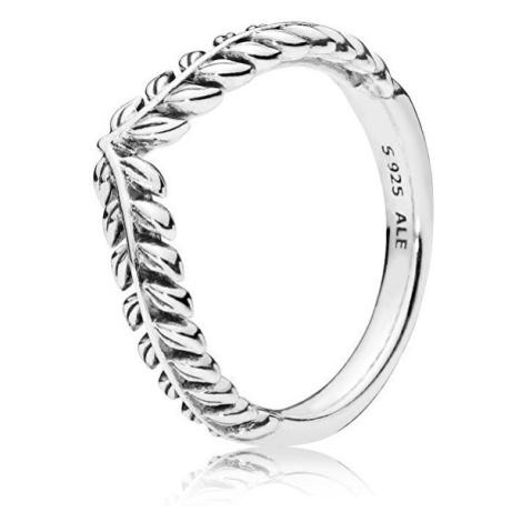 Pandora Strieborný prsteň s obilnými klasmi 50 mm