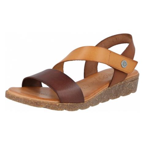 COSMOS COMFORT Remienkové sandále  hnedá / svetlohnedá