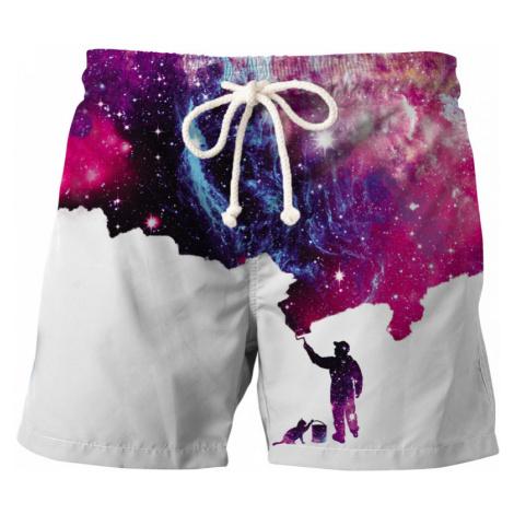 Painter Swim Shorts