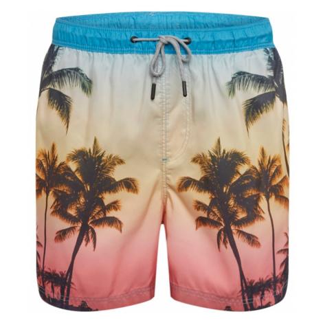 JACK & JONES Plavecké šortky  zmiešané farby
