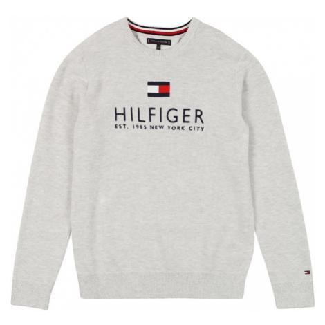 TOMMY HILFIGER Mikina  sivá / námornícka modrá / biela / červená