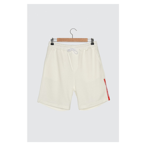 Trendyol White Male Regular Fit Shorts & Bermuda