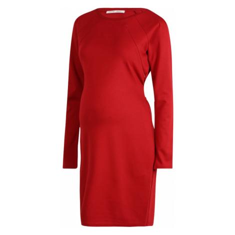 Noppies Šaty 'Sydney'  červená