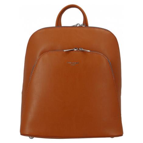 David Jones Dámsky batoh CM6031 Tan