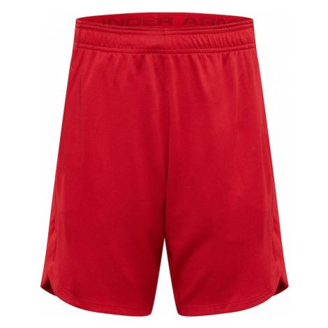 UNDER ARMOUR Športové nohavice  červená