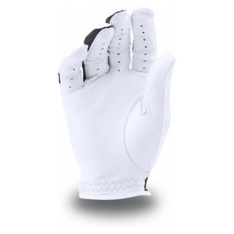Pánska golfová rukavička Under Armour Caves Synthetic