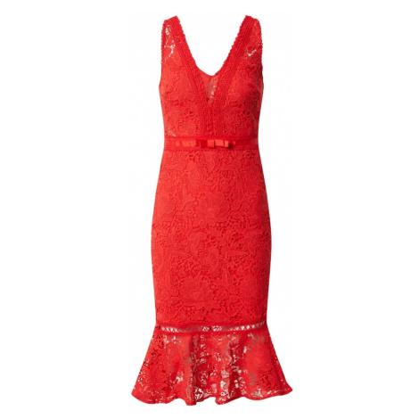 Lipsy Kokteilové šaty 'AC RED LACE BODYCON'  červená