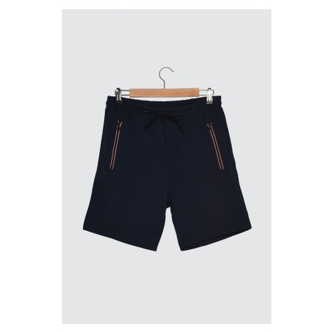Trendyol Navy Blue Men's Regular Fit Shorts & Bermuda