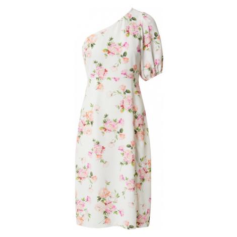 Miss Selfridge (Petite) Šaty  zelená / biela / ružová / ružová / lososová